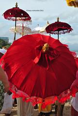 Red Red Umbrella by bayumahardika