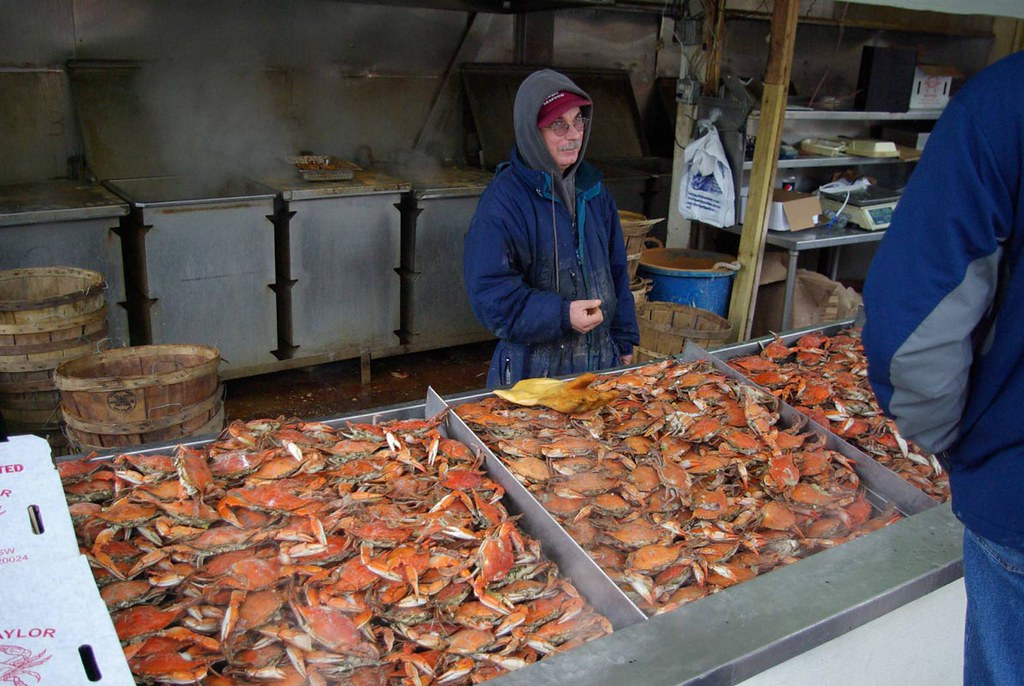 Washington D C Waterfront Open Air Fishmarket Hot