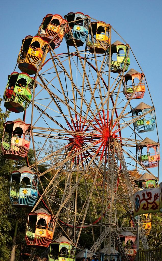 jiboner nagordola     wheel of life