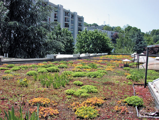 Toiture terrasse v g talis e ttv siplast con oit fabriq flickr - Toiture terrasse vegetalisee ...