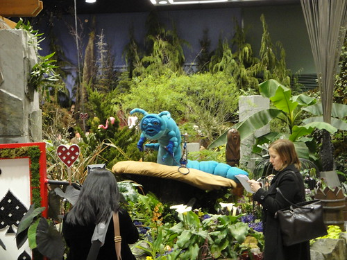 Alice in Wonderland Catterpillar | by RHR Horticulture