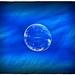 Spring Bubble2