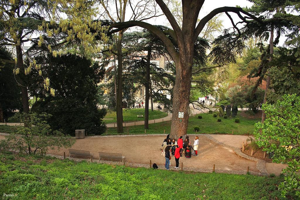 Le jardin regorge d'arbres qu'on a pas l'habitude de voir à Paris
