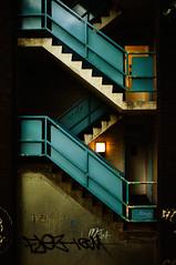 Bluey by DevilFishMark