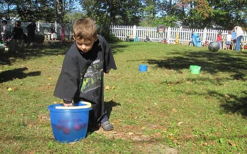 apples in the bucket