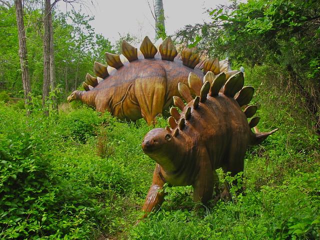stegosaurus | Flickr - Photo Sharing!
