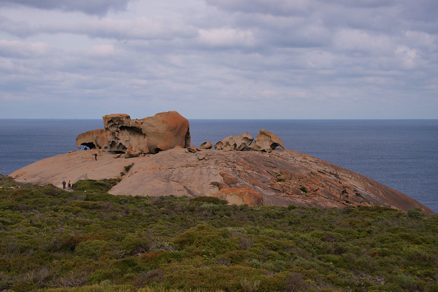 Kangaroo Island Day Tours From Victor Harbour