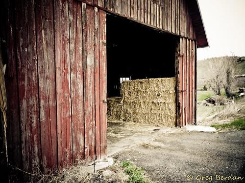 Barn Door Is Open Flickr Photo Sharing