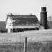 linn county barn