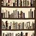 the bookshelf quilt