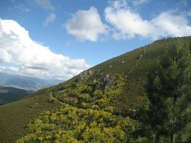 Camino en el PR-G 144 Ruta Natural dos Castros e Nivieira