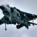 Harrier AV-8B plus 2