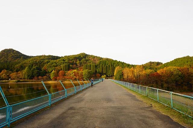 赤川ダムと紅葉