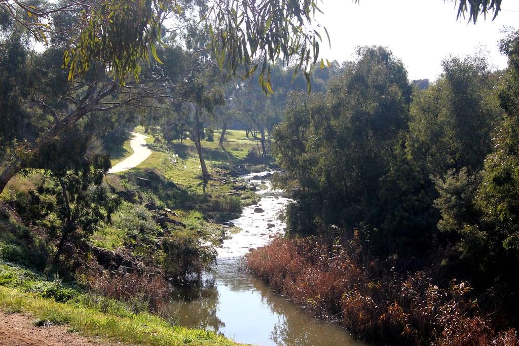 rapids on merri creek in fawkner bushland in the middle. Black Bedroom Furniture Sets. Home Design Ideas