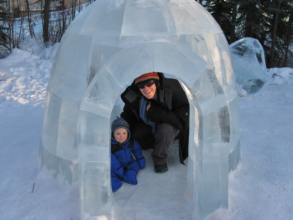 Igloo Homes For Sale Newarthill