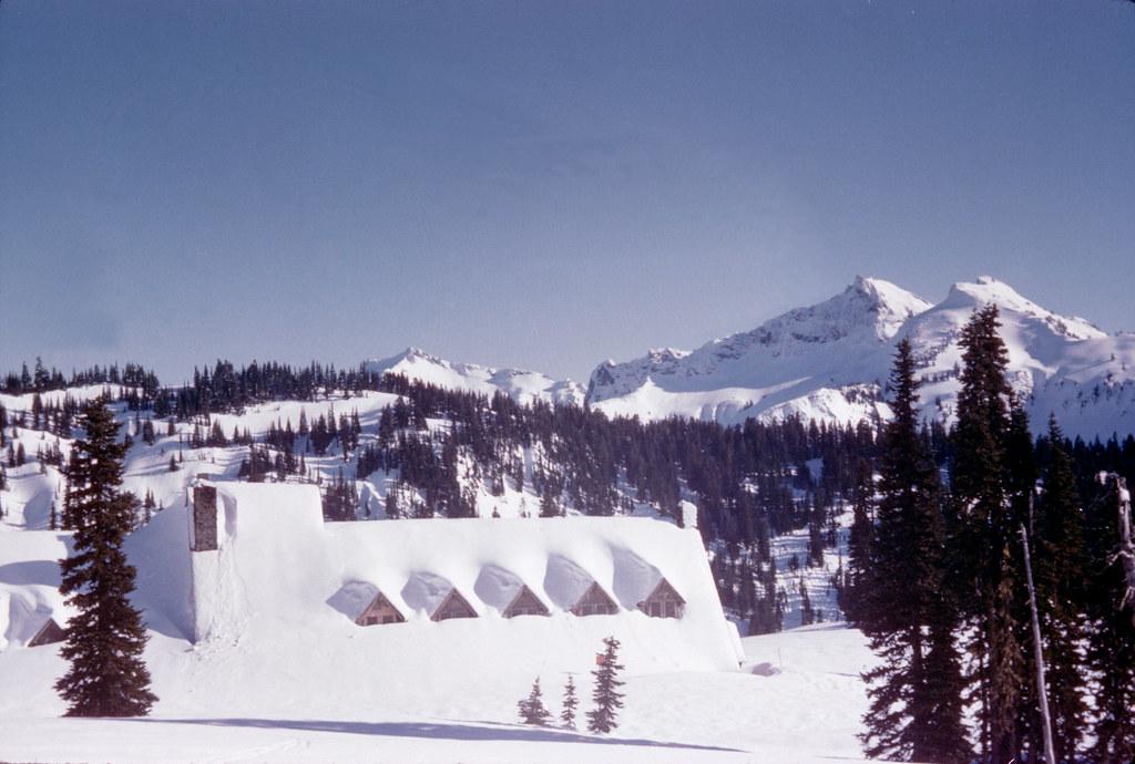 Mount Rainier National Park Day Tour