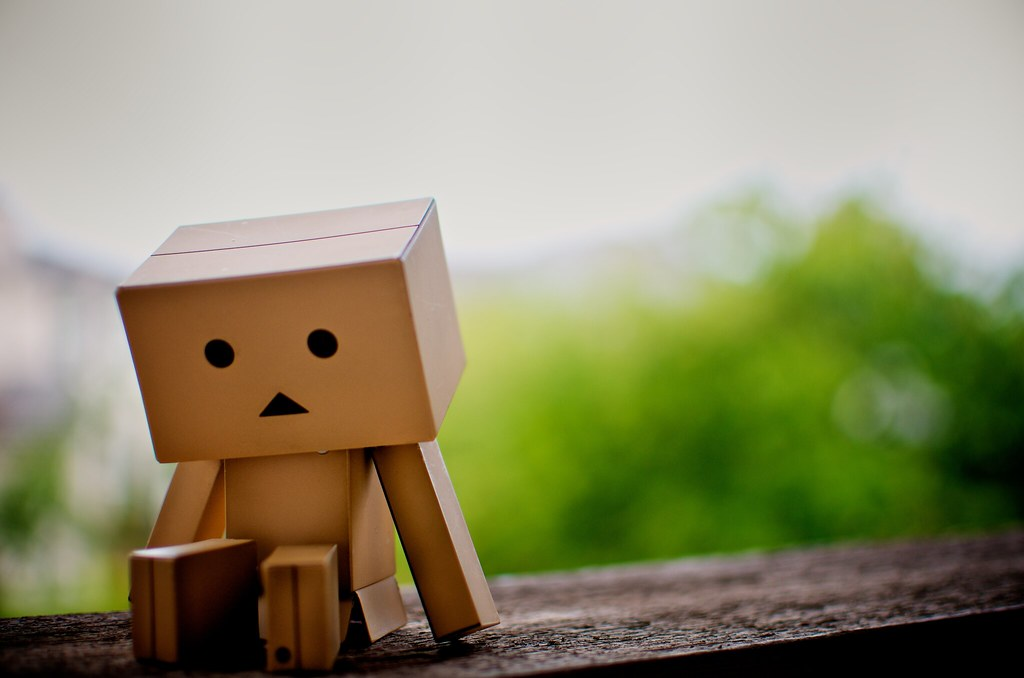 danbo is: feeling a little melancholy | with all this