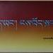 """I am Tibetan, but I don't know the Tibertan Language Well"""