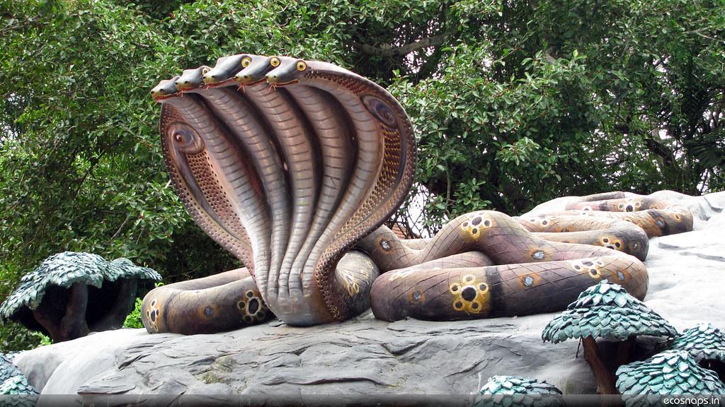 Entrance To Snake Home Jyothish Kumar P G Flickr