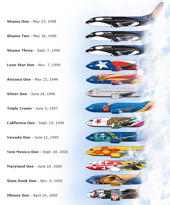 Image result for southwest state themed planes