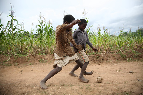 Football among maize fields | by International Livestock Research Institute