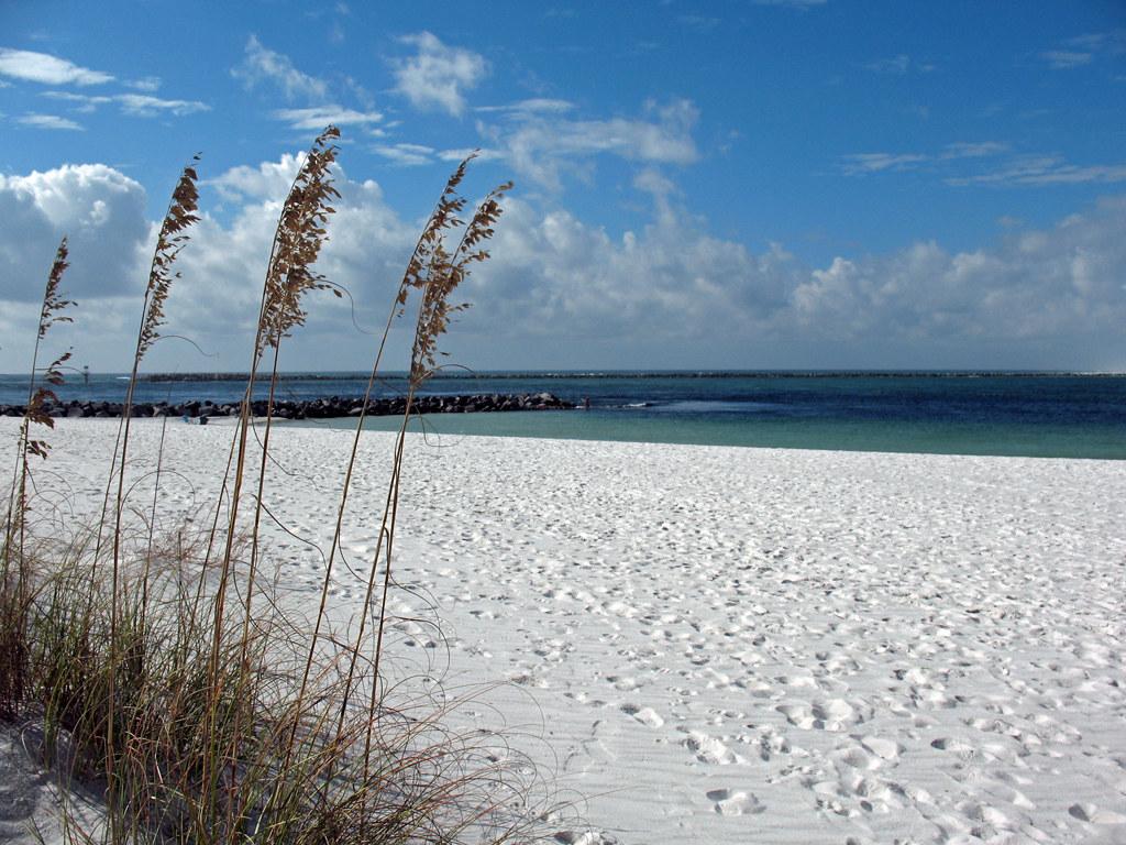 Sea Oats Destin Florida