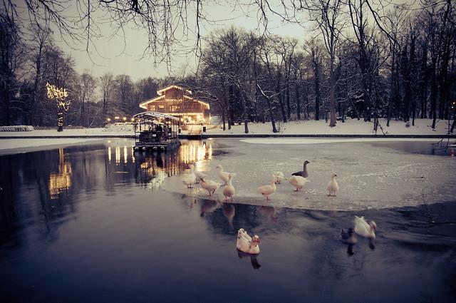Chalet robinson la cambre en hiver flickr photo sharing for Bois de la chambre bruxelles
