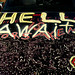 Hell Awaits Car Hood Gainesville Future