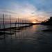 Fin de journée Hivernale @ Grand Piquey, Cap-Ferret | France