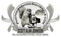 PHOTOSQUIRRELS logo by SQUIRREL400 -   photographingsquirrels.com