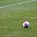 Crystal Palace Mitre Ball