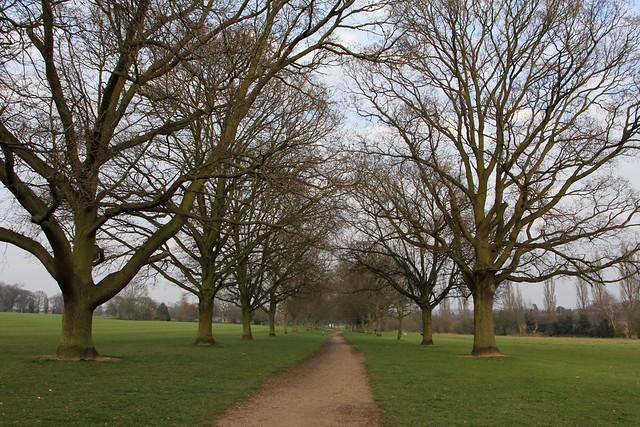 Bourne Park Ipswich Bourne Park Ipswich | Flickr