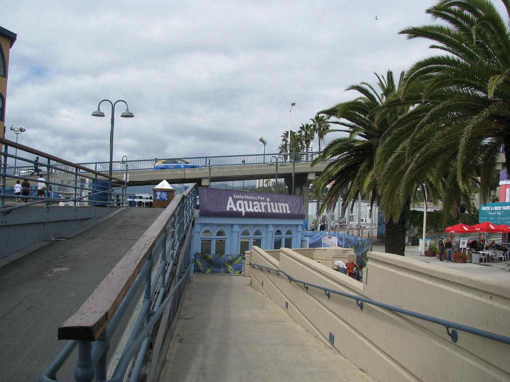 Aquarium Santa Monica Ca Rachel Patterson Flickr
