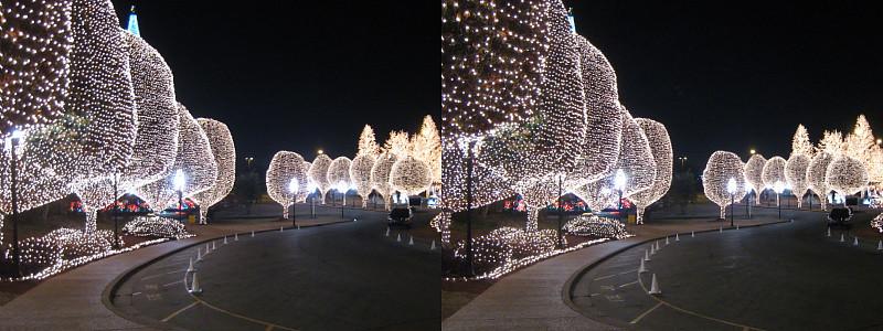 Outside White Christmas Lights