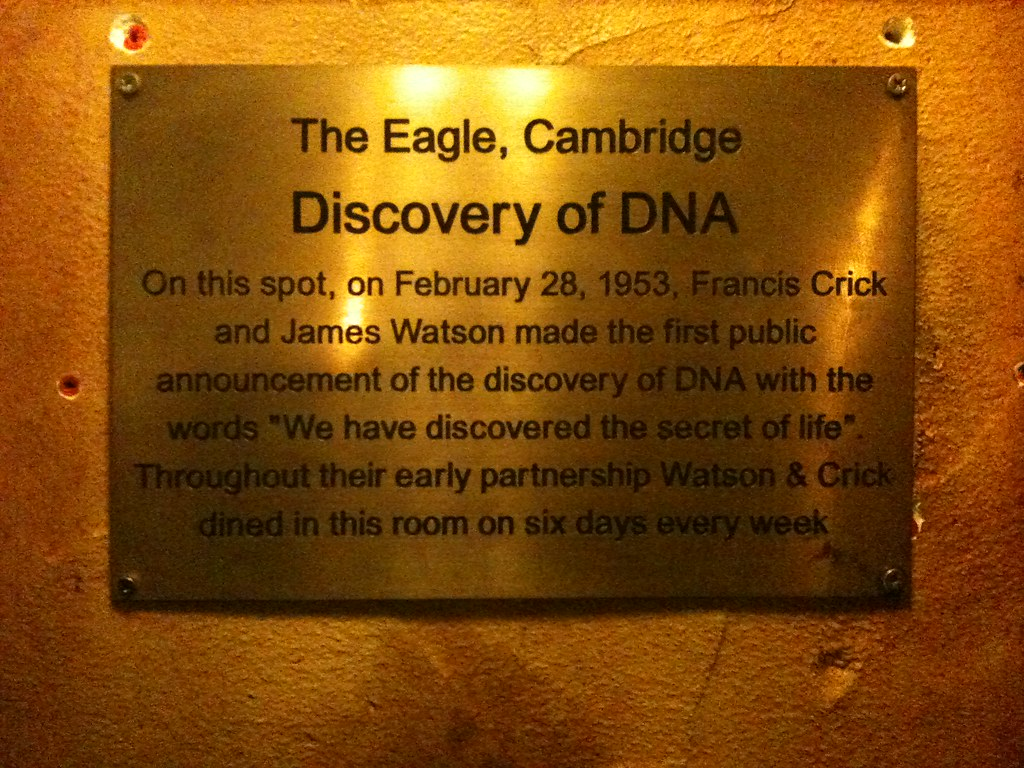 discovery of dna Discover the historical timeline of dna, starting with charles darwin in the 1800s through to the current developments and future of dna.