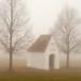 Pinhole photography in the foggy Allgäu highlands