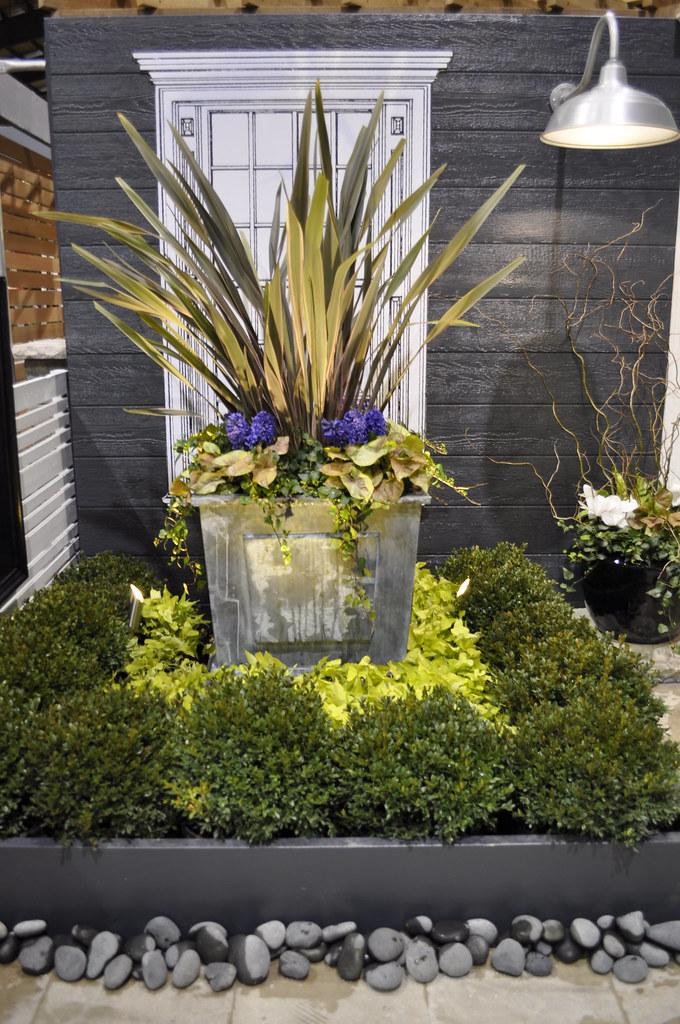 Central Ohio Home And Garden Show Phorium 39 Pink Stripe