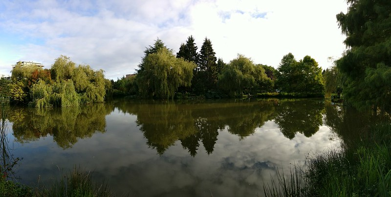 Panorama Stitch (OnePlus 3)