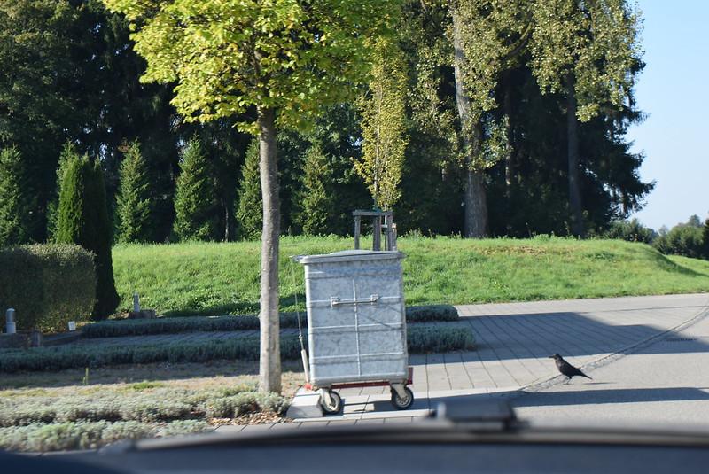 Feldbrunne to Langendorf 30.09 (5)