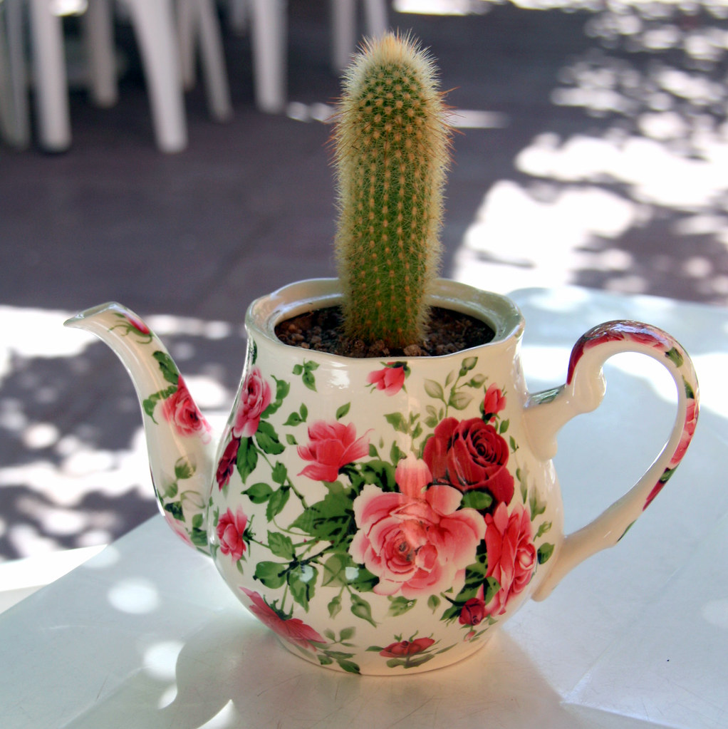 """Life in a teapot""""   I have always enjoyed the 'flowers' of ..."""