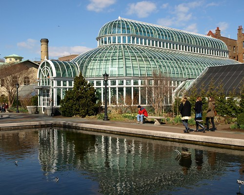 Palm house and lily pool brooklyn botanic garden new for Garden city pool new york