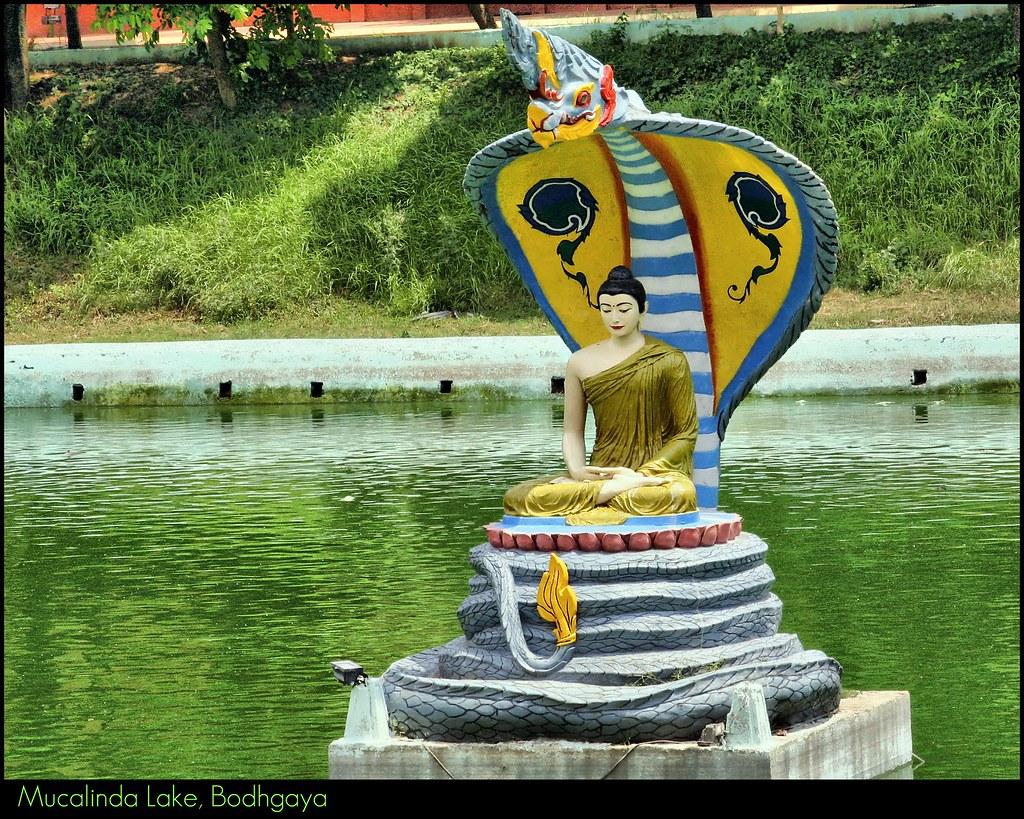 Image Result For Free Printable Buddha