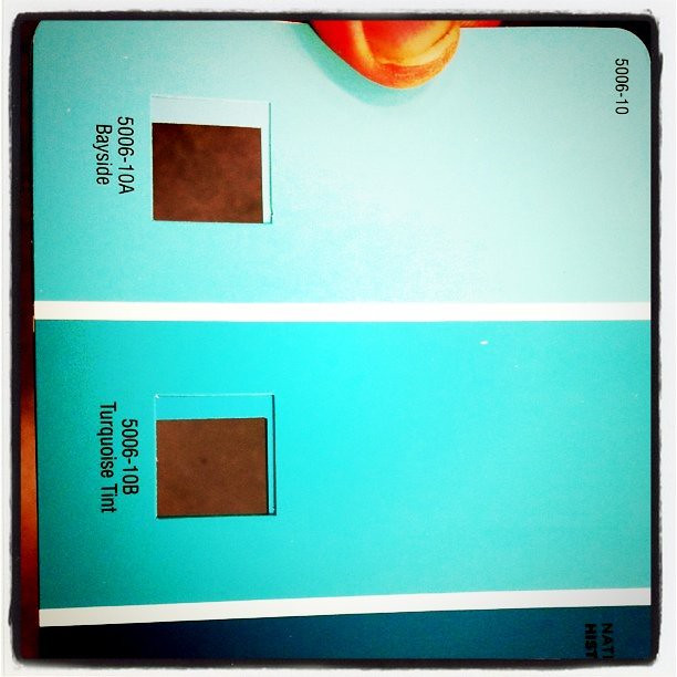 teal paint colors lowes. he went to lowe\u0027s get me paint cards wi\u2026 | flickr teal colors lowes