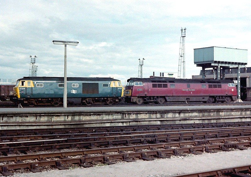 Hymek And Western At Bristol Class 35 Quot Hymek Quot D7048 And