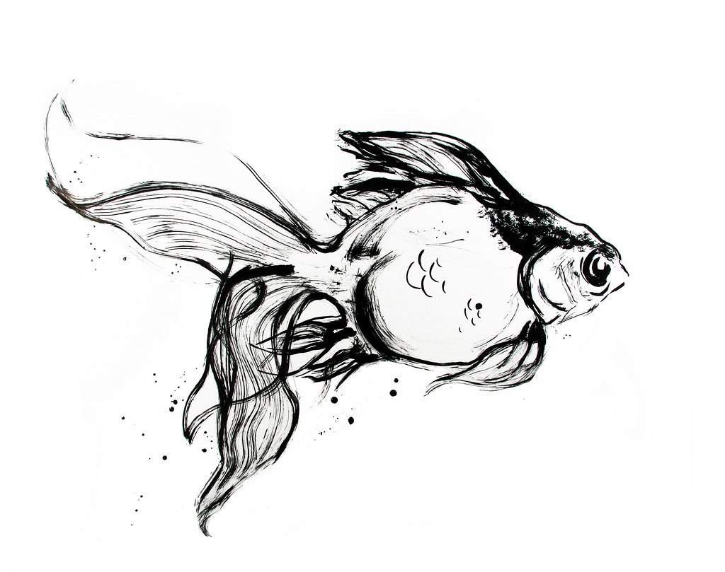 Line Art Ink : Oranda ink done with at a large scale an attempt