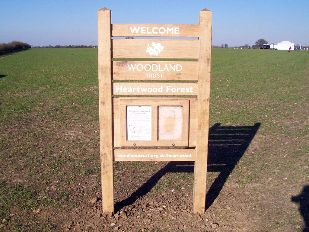 Heartwood Forest in England
