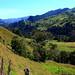 New Zealand Farm Land