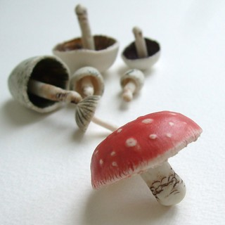 fly agaric | by c-urchin