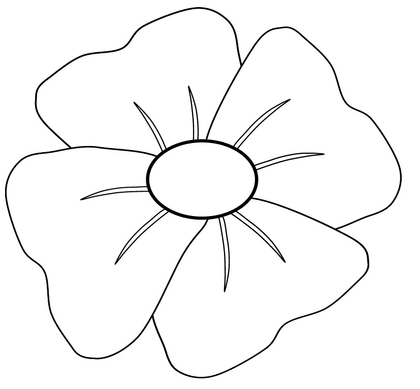 how to draw a poppy step by step youtube