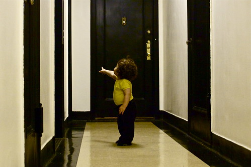 my kid is obsessed with the elevator | by smitten kitchen